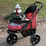 Best Dog Stroller 2021 Buying Guide (Our Top Picks)
